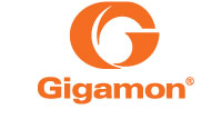 More about Gigamon